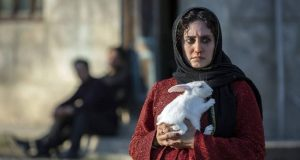 """فیلم های کوتاه ایرانی مانند """"گوسفندان ما را خواهند بلعید"""" موفق به کسب دو جایزه در جشنواره بین المللی بریتانیا می شود"""