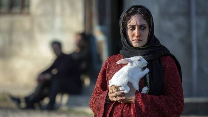 فیلم های کوتاه ایرانی مانند