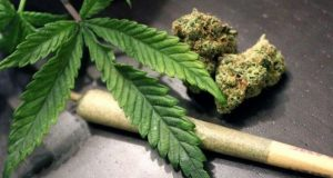 مبارزه با مواد مخدر