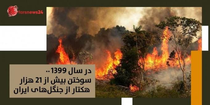 جنگلهای ایران