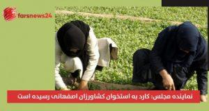 کشاورزان اصفهانی